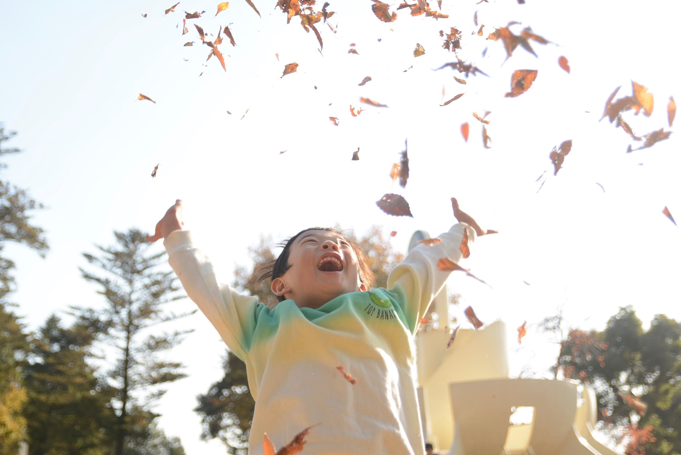 子供の写真の撮り方。連写モードで落ち葉を投げる瞬間を撮る。